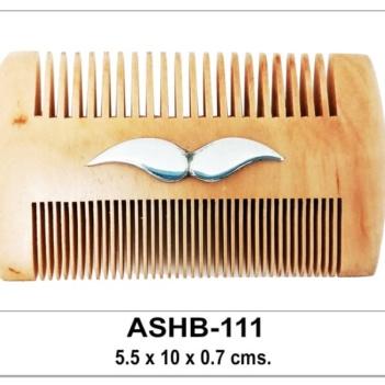 Code: ASHB-111